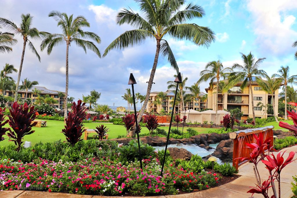 Lush landscaping at Koloa Landing Resort, Poipu on Kauai